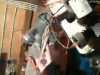 capture_03062012_213319